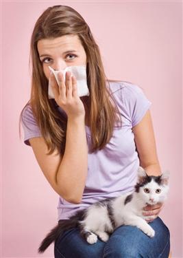 сдать на аллергию на собак
