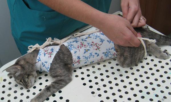 Бандаж своими руками после операции