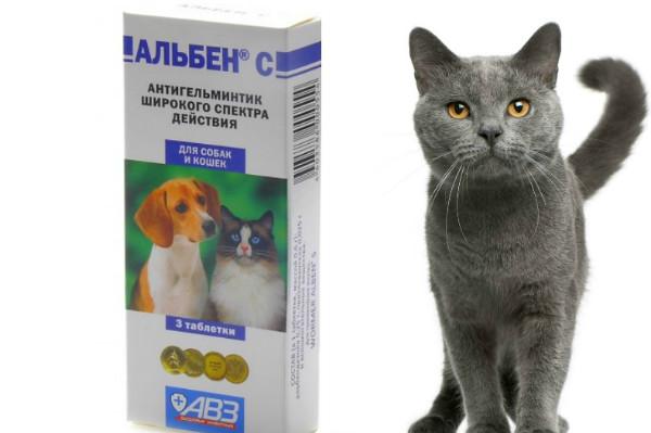 альбен с инструкция по применению для кошек отзывы - фото 8