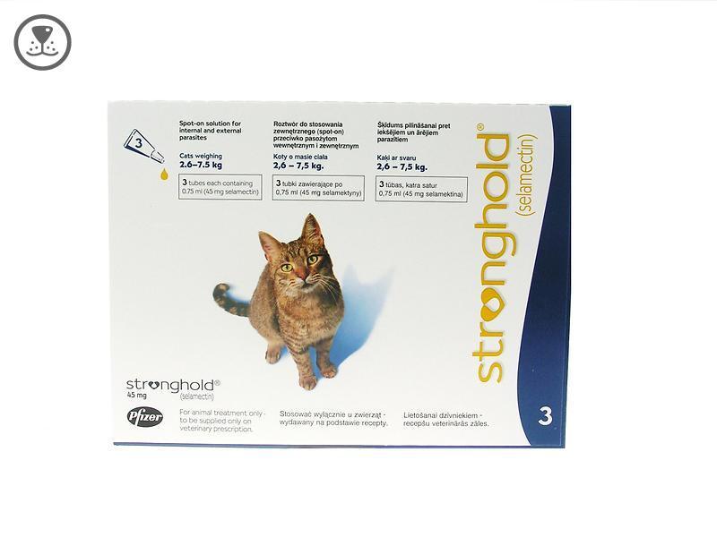 Лечение клещей у кошек