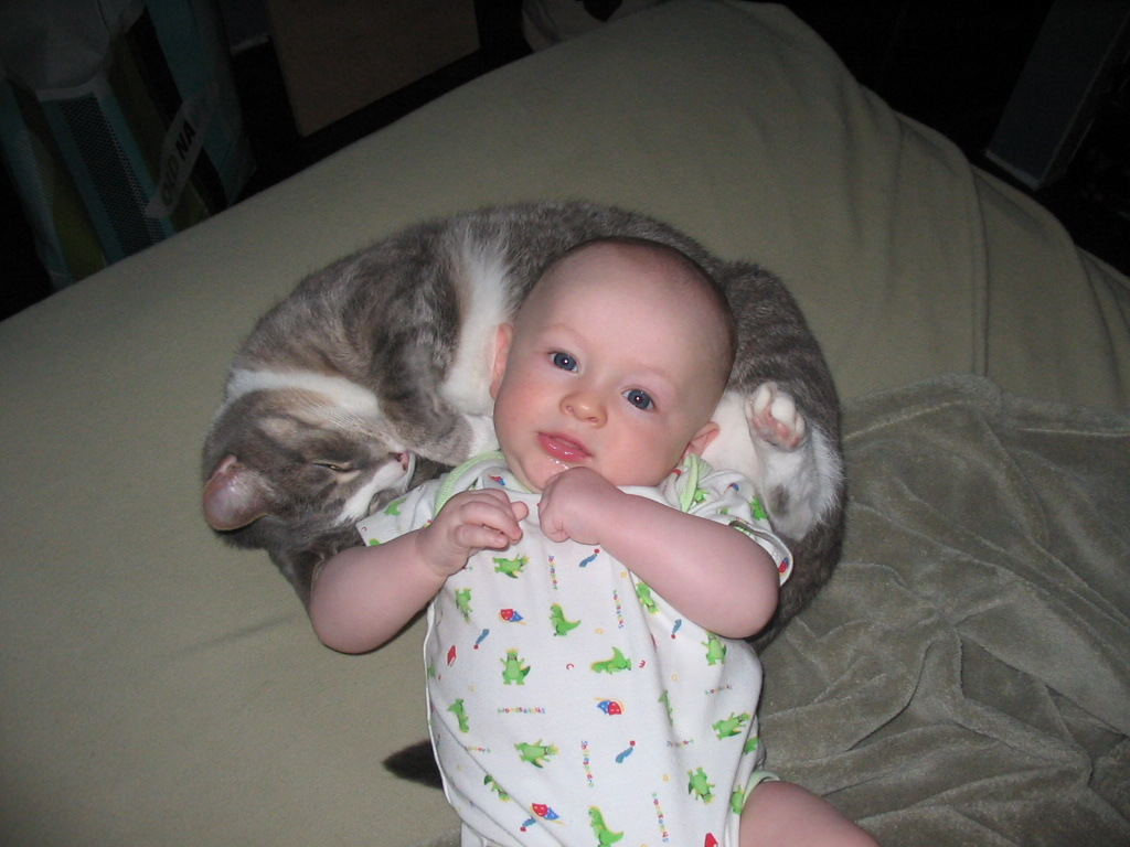Младенец и кот в доме