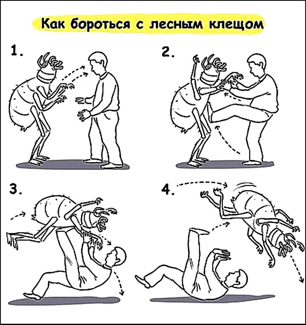 Должностная Инструкция Вольной Борьбы.