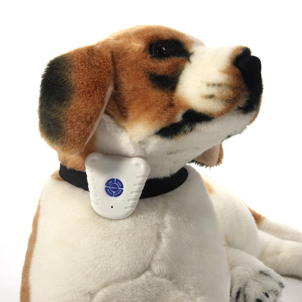 Ошейник от лая для собак: польза или …?