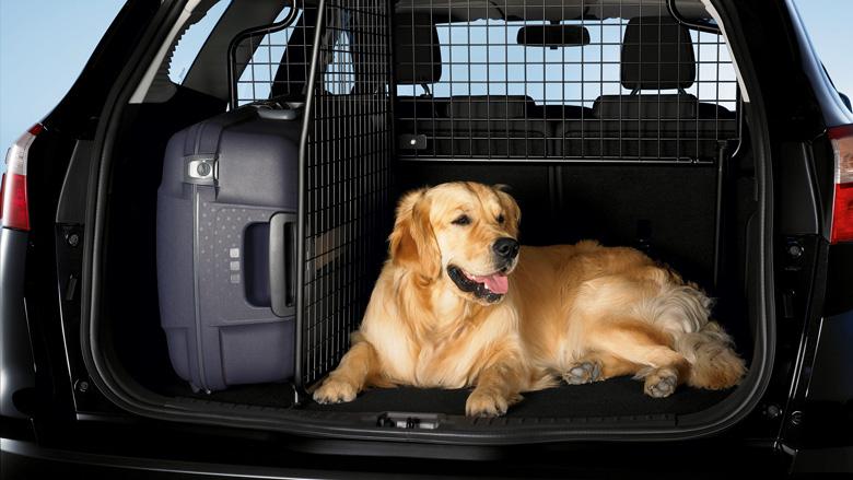 Аксессуары для собак в машину