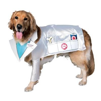 Стерилизация собак в петрозаводске сколько стоит - 93e6