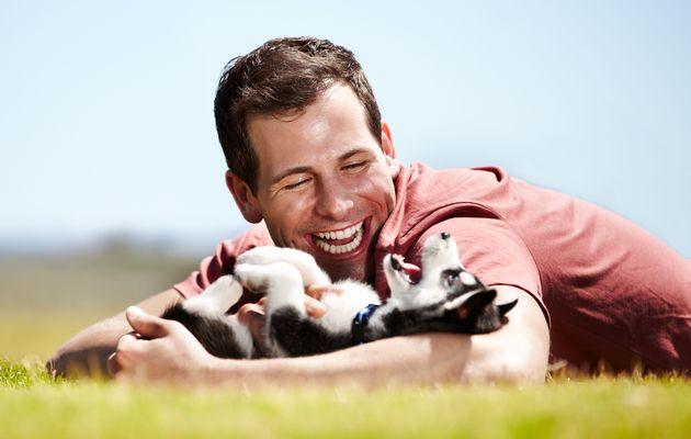 Как человеку достичь гармонии с собакой