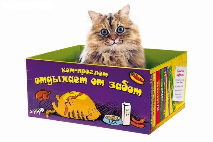 Делаем дом для кошки из коробки своими руками