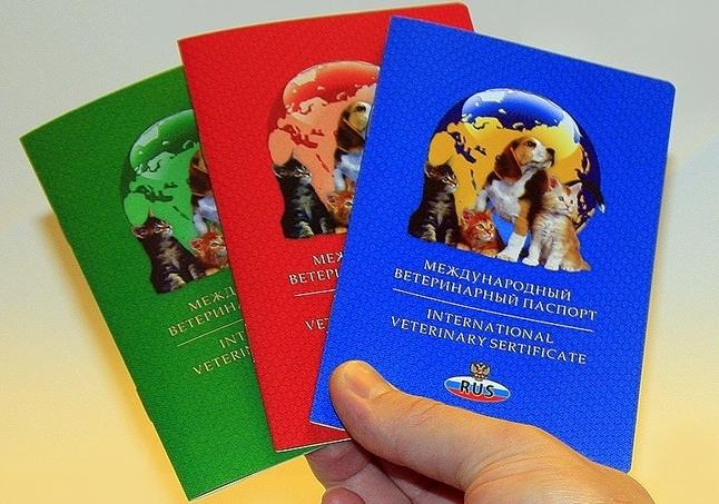 Купить Бланк Ветеринарного Паспорта - фото 8