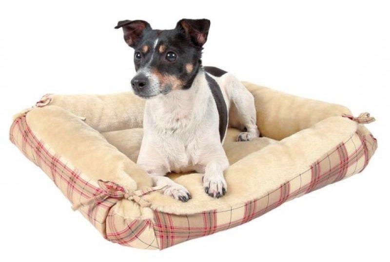 Лежак для собак своими руками лежанка