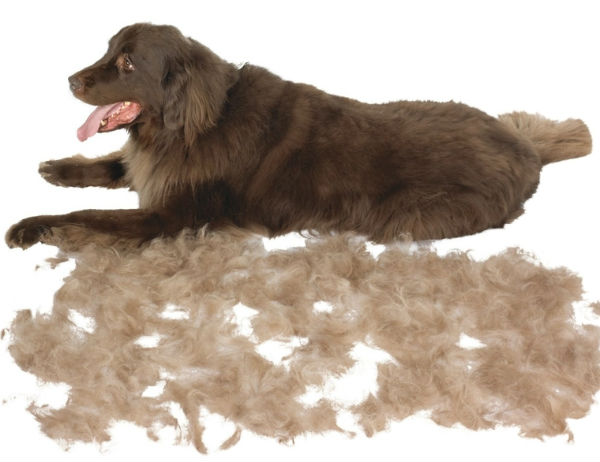 Что такое фурминатор для собак