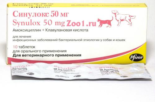 амоксициллин для животных инструкция по применению в таблетках - фото 8