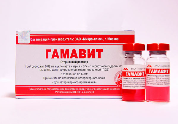доступные препараты от паразитов в организме человека