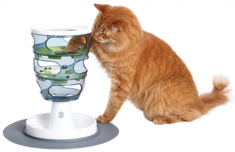 фото для кошек игрушки
