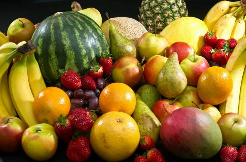 Разбираемся какие фрукты можно собакам: рекомендации по введению в прикорм, Ваши Питомцы