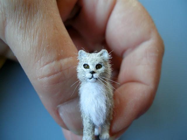 карликовые породы кошек с фотографиями и названиями