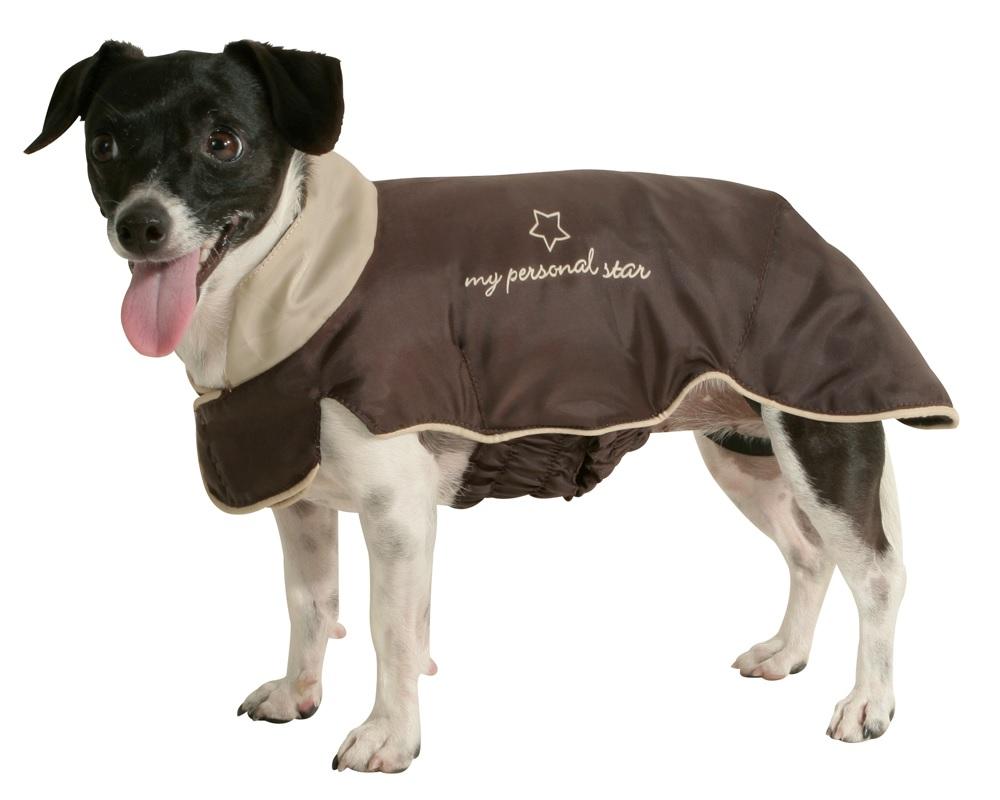 одежда для больших собак выкройки