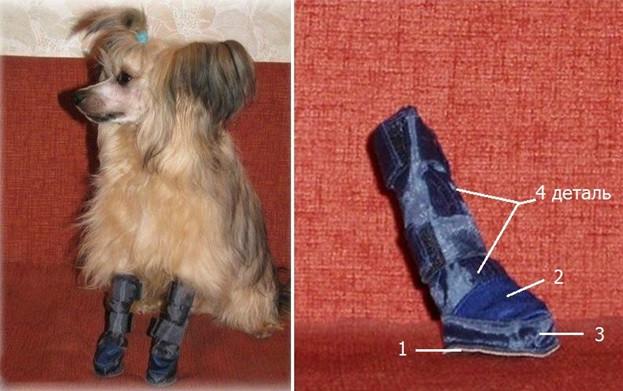 Делаем обувь для собаки своими руками — выкройки и пояснения к ним 37156bc5af6