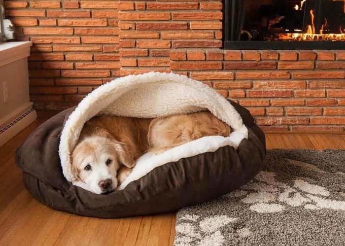 1-15 Подстилка для собаки своими руками: выкройка лежанки для собаки