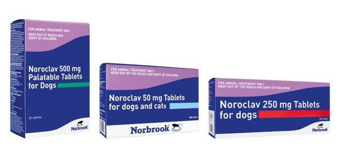 Нороклав антибиотик для людей