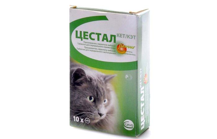Инструкция по применению препарата Цестал для кошек