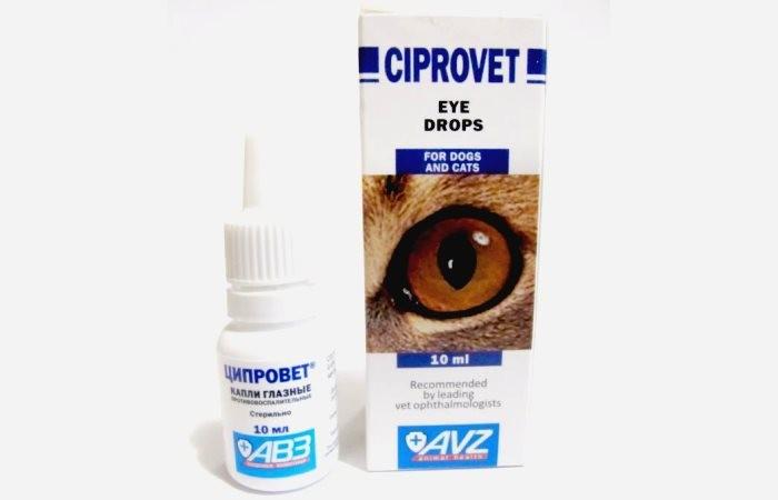 Ципрофлоксацин для кошек - инструкция по применению