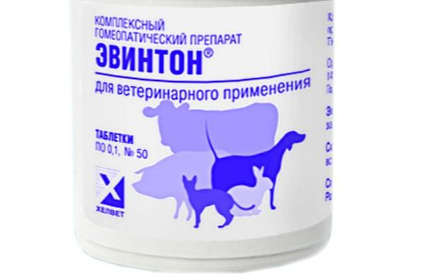 Инструкция по применению к препарату Эвинтон для кошек