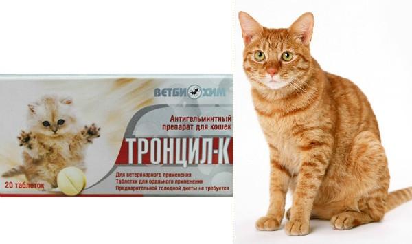 От глистов для кошек тронцил