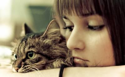 Как узнать, кого в семье больше любит кошка: признаки кошачьей любви
