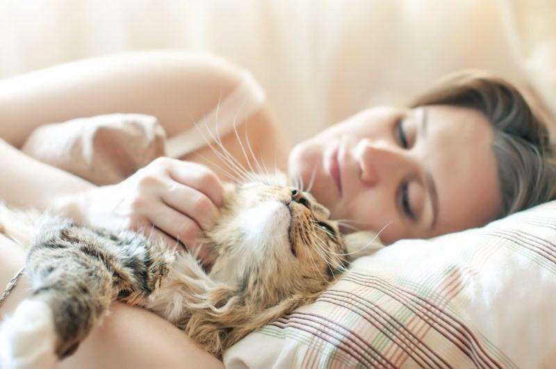 Сон на хозяине почему кошки так делают