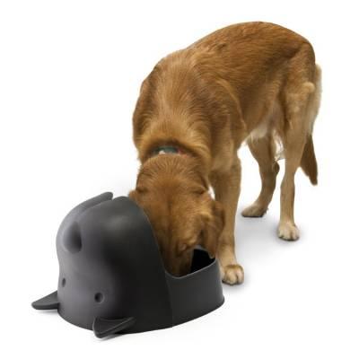 Как сделать кормушку для собаки своими руками – DogCollar