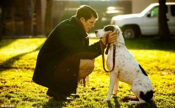Приучаем взрослую собаку к поводку: подробная инструкция || Как приучить щенка к ошейнику не разрушая доверительных отношений